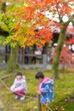 Le Japon Autumn Red Maple au temple de Tofukuji Photos stock