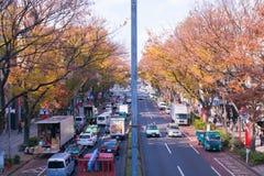 Le Japon dans la saison d'automne image libre de droits