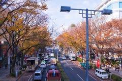 Le Japon dans la saison d'automne images libres de droits