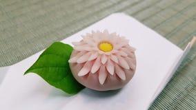 Le Japon en biscuit Photographie stock libre de droits