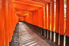 Le Japon - Fushimi Inari Photos stock
