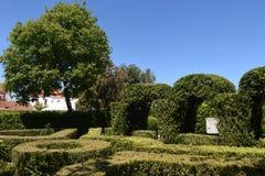 Le jardin Alter font Chao, région de Beiras Image stock