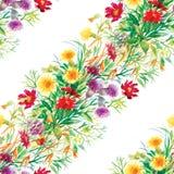 Le jardin coloré fleurit le modèle sans couture Images libres de droits