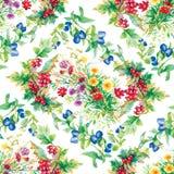 Le jardin coloré fleurit le modèle sans couture Photographie stock libre de droits