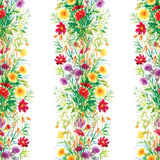 Le jardin coloré fleurit le modèle sans couture Photos libres de droits