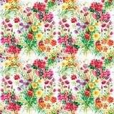 Le jardin coloré fleurit le modèle sans couture Image libre de droits