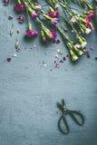 Le jardin d'été fleurit sur le fond âgé avec des ciseaux, vue supérieure, l'espace de copie Images stock