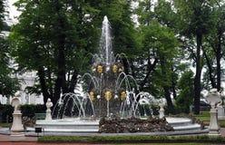 Le jardin d'été St Petersburg, Russie Image libre de droits