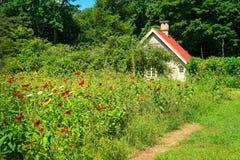 Le jardin de cottage fleurit à l'extrémité du ` s d'été images stock