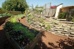 Le jardin de l'abondance Images stock