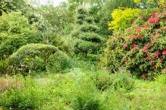 le Jardin de l Atelier i Perros Guirec Royaltyfria Bilder