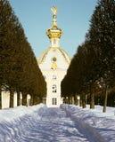 Le jardin de l'hiver dans Peterhof image libre de droits