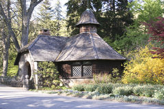 Le jardin de la nature Photo stock
