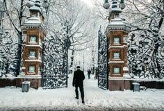 Le jardin de Mikhailovsky en hiver, encadré par des colonnes de brique avec du vieux fer a moulé des barrières en style d'Art Nou photographie stock libre de droits