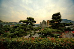 Jardin de Nan Lian à Hong Kong Photos libres de droits
