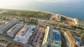Le jardin de paume sur le bord de mer à Benidorm Espagne sous le ciel bleu image stock