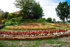 Le jardin des fleurs Photographie stock libre de droits