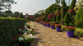Le jardin est enamouré du jardin tropical Thaïlande de Nong Nooch de parc Photo libre de droits