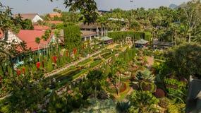 Le jardin est enamouré du jardin tropical Thaïlande de Nong Nooch de parc Photographie stock libre de droits