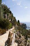 Le jardin exotique du Monaco Photographie stock
