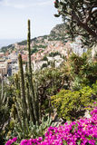 Le jardin exotique du Monaco Photos stock