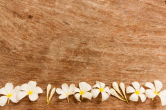 Le jardin fleurit au fond au-dessus de la table brune qui a fait à partir du bois Image libre de droits