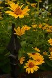 Le jardin fleurit la barrière de fer travaillé de vintage Photos libres de droits