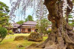Le jardin japonais commémoratif de Fujita dans Hirosaki, Japon image libre de droits