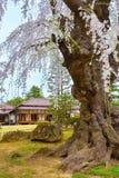 Le jardin japonais commémoratif de Fujita dans Hirosaki, Japon photos libres de droits