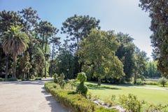 Le jardin Santiago d'établissement vinicole font le Chili Images libres de droits
