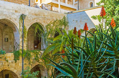 Le jardin tropical dans Kirche Photo libre de droits