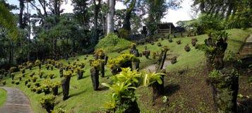 Le jardin tropical du balata, la Martinique Image libre de droits
