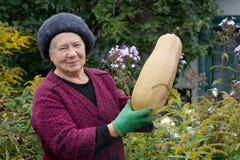 Le jardinier Images libres de droits