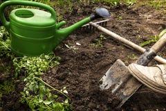Le jardinier creuse la terre pour des jeunes plantes Photographie stock