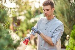 Le jardinier de type pulvérise l'eau sur des usines dans le beau crèche-jardin un jour ensoleillé Travail dans le jardinier photographie stock libre de droits