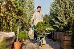 Le jardinier de type roule un chariot avec des jeunes plantes dans des pots le long du chemin de jardin dans le crèche-jardin mer photographie stock libre de droits