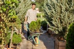 Le jardinier de type roule un chariot avec des jeunes plantes dans des pots le long du chemin de jardin dans le crèche-jardin mer photos libres de droits