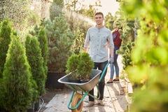 Le jardinier de type roule un chariot avec des jeunes plantes dans des pots le long du chemin de jardin dans le crèche-jardin mer photo stock