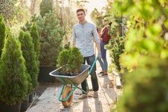 Le jardinier de type roule un chariot avec des jeunes plantes dans des pots le long du chemin de jardin dans le crèche-jardin mer image libre de droits