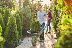 Le jardinier de type roule un chariot avec des jeunes plantes dans des pots le long du chemin de jardin dans le cr?che-jardin mer photos stock