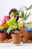 Le jardinier féminin avec des usines à l'intérieur image libre de droits