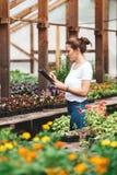 Le jardinier f?minin inspectant des fleurs cultivent ? l'int?rieur de la serre chaude photos stock