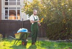 Le jardinier fatigué dans l'uniforme vert nettoie le râteau des feuilles Jardinage et nettoyage de yard images stock