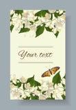 Le jasmin fleurit la bannière illustration de vecteur