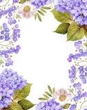 Le jasmin, roses blanches et m'oublient pas composition en fond illustration de vecteur