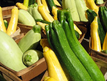 Le jaune andGreen la courge Photos stock