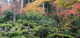 Le jaune orange rouge et la feuille japonaise verte sur la branche de l'arbre pendant l'automne font du jardinage Photographie stock