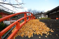Le jaune part sur le pont dans le tombeau Kyoto de Shimogamo-jinja Images stock