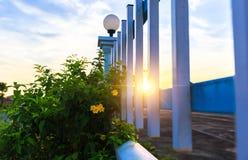 Le jaune s'abaisse près de la barrière et du coucher du soleil avec le nuage photos stock