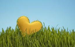 Le jaune a senti la chaleur dans l'herbe verte au-dessus du ciel bleu Photos libres de droits
